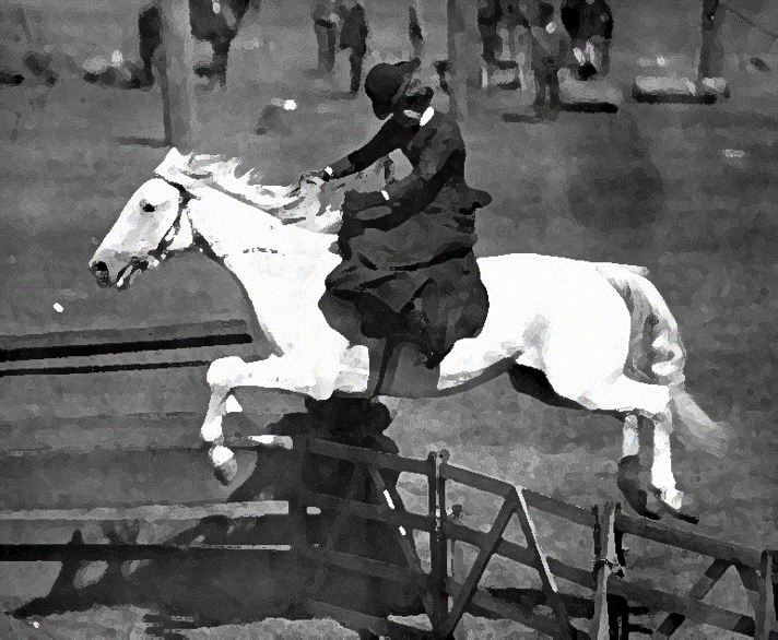 Victorian woman jumping over a fence on a white horse